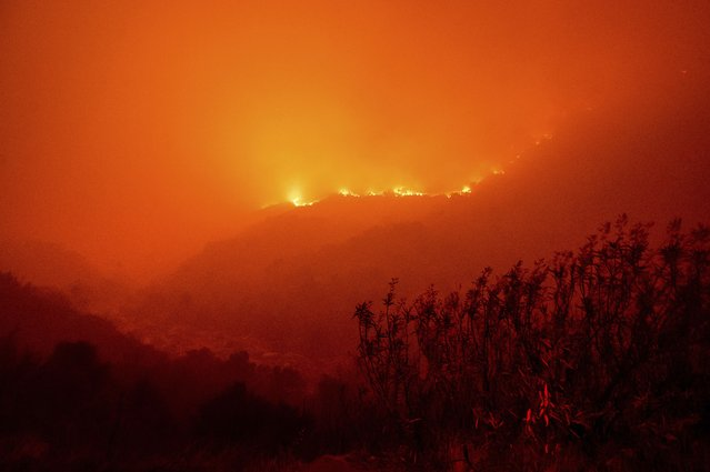 Flames from the KNP Complex Fire burn along a hillside above the Kaweah River in Sequoia National Park, Calif., on Tuesday, September 14, 2021. The blaze is burning near the Giant Forest, home to more than 2,000 giant sequoias. (Photo by Noah Berger/AP Photo)