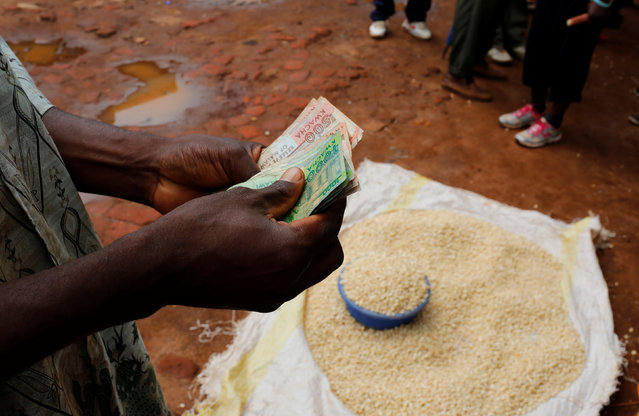 A Malawian trader counts money as he sells maize near the capital Lilongwe, Malawi, February 1, 2016. (Photo by Mike Hutchings/Reuters)