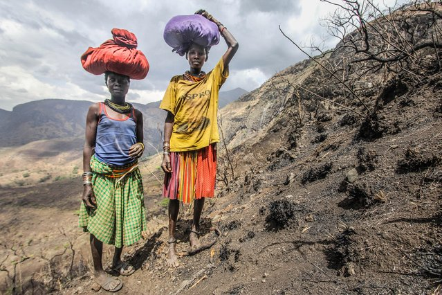 Karamojong women climb Mount Moroto in search of firewood which they can then sell at the local market in Moroto town, Karamoja, Uganda, February 2017. Inside the African tribe that walk for up to 10 hours a day to find water. Photographer, Sumy Sadurni, travelled to Northern Uganda to capture how the Karamajong tribe live. The nomadic tribe are famous for their elaborate scar patterns, athletic prowess and beautiful woman, but Sumy wanted to focus on how the climate change has affected their lives in a big way. (Photo by Sumy Sadurni/Barcroft Images)