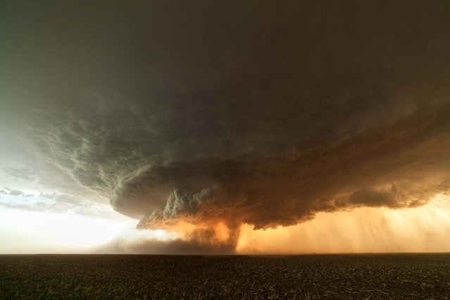 A picturesque supercell formation in the northwest of Booker, Texas from June 2013. (Photo by Mike Olbinski/Barcroft Media)