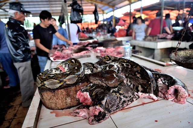 This picture taken on February 18, 2017 shows python meat at a stall in Tomohon market in northern Sulawesi, Indonesia. (Photo by Bay Ismoyo/AFP Photo)