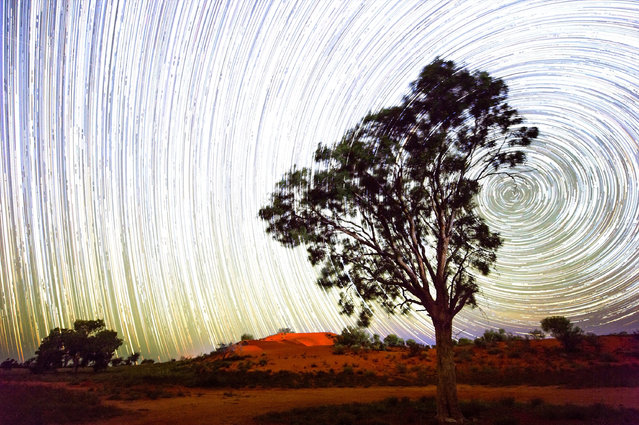 A star trail is seen over red sand dunes in the town of Windorah on August 29, 2016 in Windorah, Australia. Windorah is a sleepy town in the far south-west of Queensland and is famous for hosting the Yabby Races as part of the lead up to the Birdsville Races. (Photo by Bradley Kanaris/Getty Images)