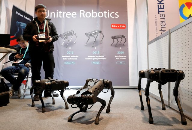 Li Chen of Unitree Robotics operates animal-inspired robots during the 2020 CES in Las Vegas, Nevada, U.S. January 8, 2020. (Photo by Steve Marcus/Reuters)
