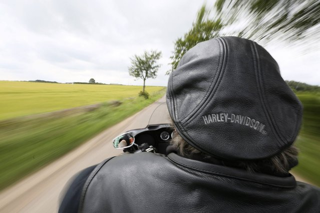 Harley Davidson enthusiast Wolfie rides through the Angus countryside, Scotland, July 12, 2014. Hundreds of bikers left Brechin Castle for a ride out past the Davidson cottage, three miles outside Brechin, just outside the village of Aberlemno. It was from this tiny cottage that Sandy Davidson, a local blacksmith, emigrated to America where three of his grandchildren along with Arthur Harley, became the founding members of the Harley-Davidson Motor Cycle Company. (Photo by Paul Hackett/Reuters)