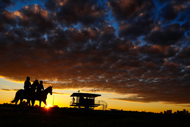 General view of horses and riders during a trackwork session at Flemington Racecourse on August 22, 2014 in Melbourne, Australia. (Photo by Vince Caligiuri/Getty Images)