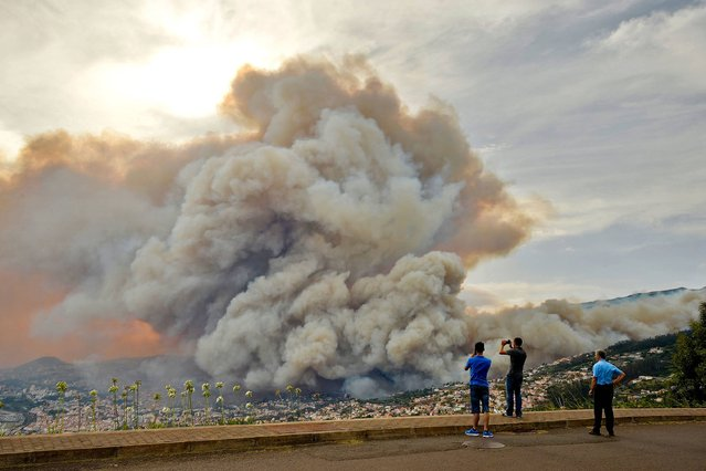 People take pictures of the smoke rising from a wildfire at Curral dos Romeiros, Funchal in Madeira island on August 9, 2016. Several houses were destroyed by multiple blazes in the region of Funchal and some 250 people were evacuated to spend the safe night in military installations, said the head of the Civil Protection government regional, Rubina Leal. (Photo by Joana Sousa/AFP Photo)