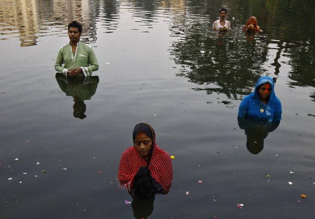 Hindu devotees worship the Sun god Surya in a pond during the Hindu religious festival of Chatt Puja in Kolkata October 30, 2014. (Photo by Rupak De Chowdhuri/Reuters)