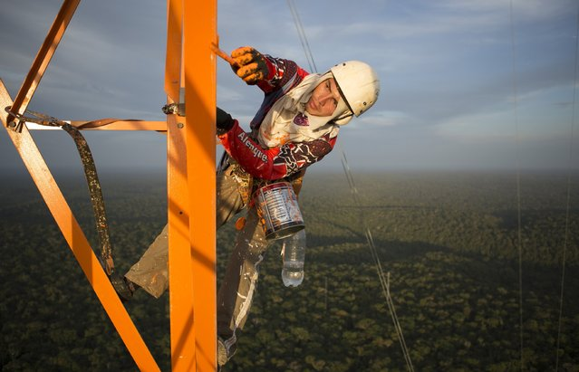 A worker paints the Amazon Tall Tower Observatory (ATTO) in Sao Sebastiao do Uatuma in the middle of the Amazon forest in Amazonas state January 10, 2015. The Amazon Tall Tower Observatory is a project of Brazil's National Institute of Amazonian Research and Germany's Max Planck Institute and will be equipped with high-tech instruments and an observatory to monitor relationships between the jungle and the atmosphere from next July. (Photo by Bruno Kelly/Reuters)
