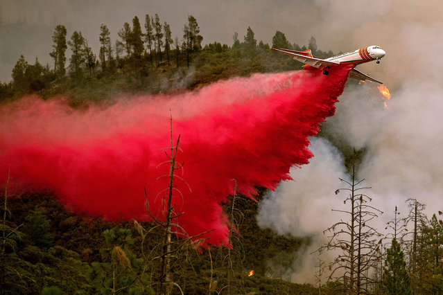 An air tanker drops retardant while battling the Ferguson fire in Stanislaus National Forest, near Yosemite National Park, California on July 21, 2018. A fire that claimed the life of one firefighter and injured two others near California's Yosemite national park has almost doubled in size in three days, authorities said Friday. The US Department of Agriculture (USDA) said the so-called Ferguson fire had spread to an area of 22,892 acres (92.6 square kilometers), and is so far only 7 percent contained. (Photo by Noah Berger/AFP Photo)