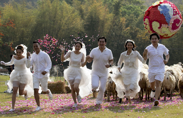Brides and grooms, from left to right, Prontathorn Pronnapatthun, Chaiyut Phuamgphoeksuk, Daradai Wachirapootthacoon, Artit Thanajindawong, Nichapatr Koomsombut and Pirat Rungthongoran run away from a giant flower ball as a part of an adventure-themed wedding ceremony in Ratchaburi Province, Thailand, Friday, February 13, 2015, on the eve of Valentine's Day. (Photo by Wason Wanichakorn/AP Photo)