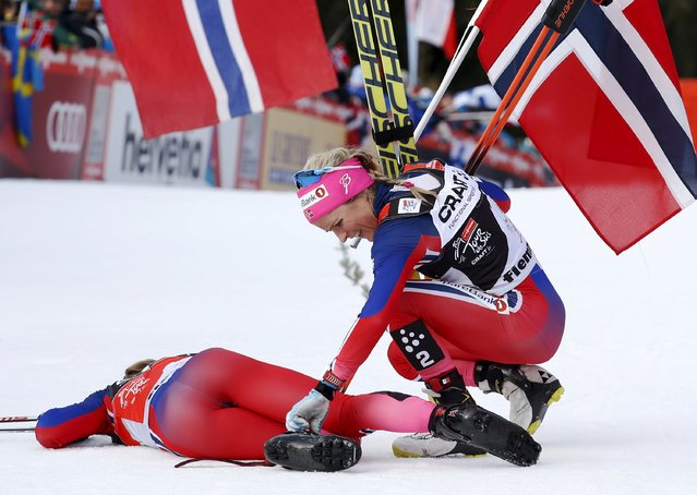 FIS Tour de Ski overall women winner Therese Johaug of Norway helps her compatriot Ingvild Flugstad Oestberg after she crossed the finish line during the women's cross-country skiing 9km final climb free pursuit race on the Alpe Cermis,  in Val di Fiemme January 10, 2016. (Photo by Alessandro Garofalo/Reuters)