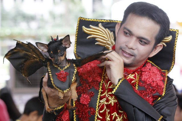 A pet owner holds up his dog which is dressed in a Dracula costume during the Scaredy Cats and Dogs Halloween costume competition in Manila. (Photo by Romeo Ranoco/Reuters)