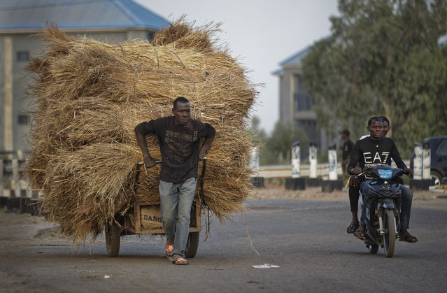 A manual laborer pulls a cart of hay as men drive past on a motorcycle, near the offices of the Independent National Electoral Commission in Kano, northern Nigeria Thursday, February 14, 2019. (Photo by Ben Curtis/AP Photo)