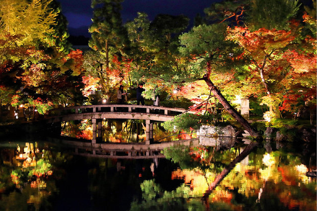 Coloured maples are illuminated at a test lighting at Eikando-Zenrinji Temple on November 1, 2018 in Kyoto, Japan. The night illumination will take place from November 3 to December 2. (Photo by The Asahi Shimbun via Getty Images)