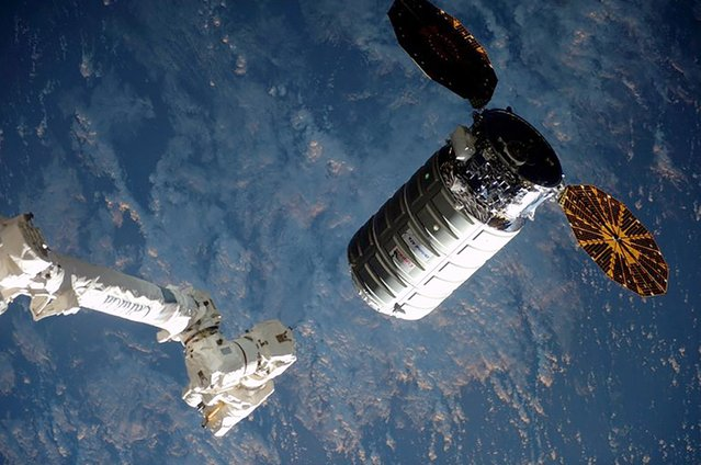 The Cygnus cargo ship nears the robotic arm at the International Space Station in this NASA image taken March 26, 2016. The Cygnus capsule is loaded with nearly 7,500 pounds (3,400 kg) of food, science experiments and equipment including a 3-D printer to build tools for astronauts and non-stick grippers modeled after gecko feet. (Photo by Reuters/NASA)