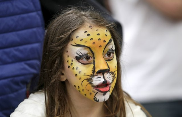 A child has her face painted as a cat during the Mediterranean Winner 2016 cat show in Rome, Italy, April 3, 2016. (Photo by Max Rossi/Reuters)