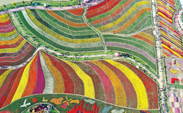 Aerial view of tourists enjoying over 3,000 tulips at a scenic area on the second day of Qingming Festival holiday on April 6, 2019 in Yancheng, Jiangsu Province of China. The Qingming Festival, also known as Tomb-Sweeping Day, fell on April 5 this year. (Photo by Yang Suping/VCG via Getty Images)