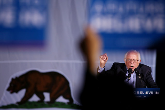 Democratic presidential candidate Bernie Sanders addresses supporters during a rally, May 21, 2016 in National City, California. (Photo by Sandy Huffaker/AFP Photo)