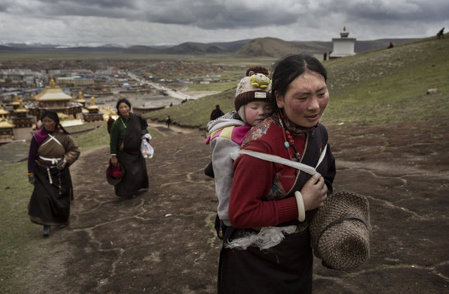 A Tibetan nomad woman carries her child on the 15th day of Saka Dawa, the holiest day of the Buddhist calendar when it is prohibited from harvesting, on May 21, 2016 at the  Sershul Monastery on the Tibetan Plateau in the Garze Tibetan Autonomous Prefecture of Sichuan province. (Photo by Kevin Frayer/Getty Images)