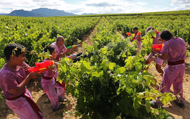 """Revelers use toys to spray wine on each other as they take part in the """"Battle of Wine"""" (La batalla del vino de Haro), a wine fight, during the Haro Wine Festival, in Haro, in the northern province of La Rioja on June 29, 2014. More than nine thousand locals and tourists threw around 130.000 litres of wine at each other during the Haro Wine Festival, according to local media. (Photo by Cesar Manso/AFP Photo)"""