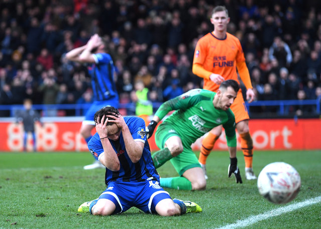 Ollie Rathbone of Rochdale reacts after a missed chance during the FA Cup Third Round match between Rochdale AFC and Newcastle United at Spotland Stadium on January 04, 2020 in Rochdale, England. (Photo by Laurence Griffiths/Getty Images)