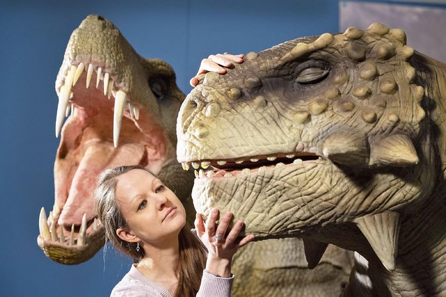 "Deputy Keeper of Natural History Dr Emma Nicholls views animatronic models of a Inostrancevia (left) and a Scutosaurus (right), during the preview for the Horniman Museum's ""Permian Monsters: Life Before the Dinosaurs"" exhibition in south London on February 10, 2020. (Photo by Dominic Lipinski/PA Images via Getty Images)"