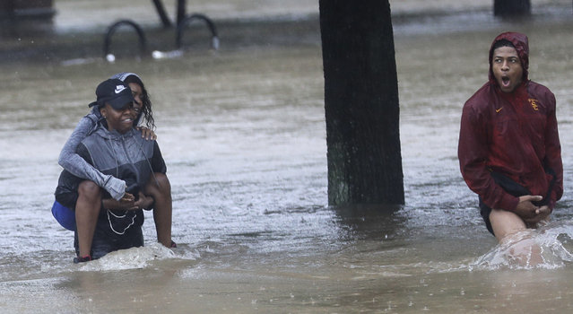 Residents wade through floodwaters from Tropical Storm Harvey Sunday, August 27, 2017, in Houston, Texas. (Photo by David J. Phillip/AP Photo)