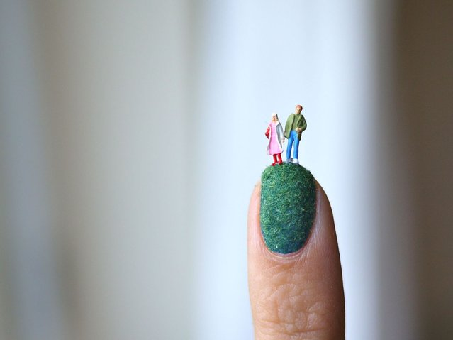 Pointed out: This couple are delicately balanced. (Photo by Alice Bartlett/Flickr)