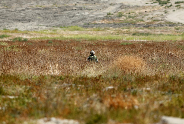 A Canadian soldier from the Royal 22nd Regiment keeps watch in a open field as he trains for non-combative extraction in urban terrain as part of Rim of the Pacific (RIMPAC) 2016 exercise held at Camp Pendleton, California United States, July 11, 2016. (Photo by Mike Blake/Reuters)