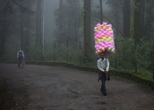 A street hawker walks carrying a bunch of colorful cotton candy on a pole on a rainy day in Dharmsala, India, Wednesday, September 3, 2014. (Photo by Ashwini Bhatia/AP Photo)