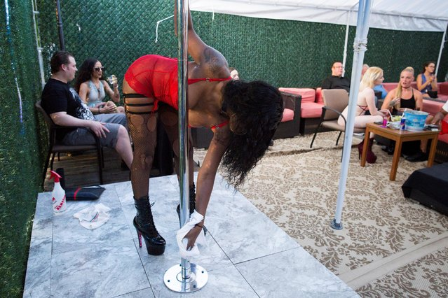 A dancer sanitizes the pole before performing on the outside patio at Cheerleaders Gentlemen's Club in Gloucester City, New Jersey, U.S. on July 17, 2020. The New Jersey establishment, which received a loan, has a liquor license for the outdoor patio. So while empty stools are stacked on the bar inside, outside the dancers work an improvised stage.  (Photo by Rachel Wisniewski/Reuters)