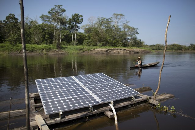 Solar panels power water pumps to supply river water to the houses of the Vila Nova do Amana community in the Sustainable Development Reserve, in Amazonas state, Brazil, September 22, 2015. (Photo by Bruno Kelly/Reuters)