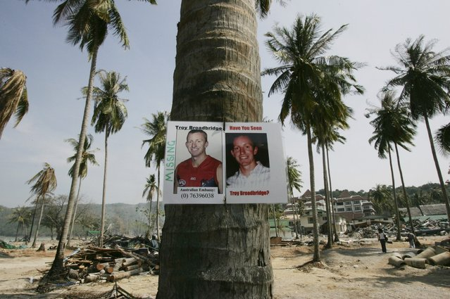 A picture of missing Australian Troy Broadbridge is pegged to a tree on Thailand's Phi Phi island in this January 3, 2005 file photo. (Photo by Kin Cheung/Reuters)