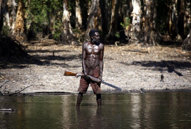 """Australian Aboriginal hunter Roy Gaykamangu of the Yolngu people stands in a billabong after shooting a crocodile near the """"out station"""" of Yathalamarra, located on the outksirts of the community of Ramingining in East Arnhem Land November 22, 2014. (Photo by David Gray/Reuters)"""