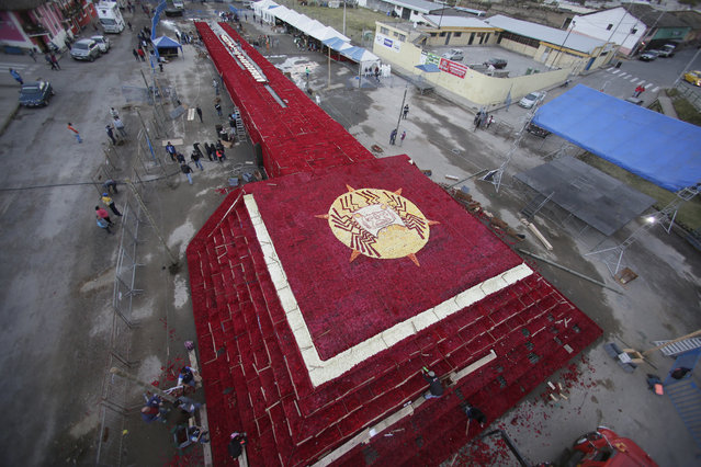Locals work on placing roses on a structure made to resemble the Cochasqui pyramid temple as they try to impose a new category in the Guinness World Records as the biggest structure made with roses, in Tabacundo, Ecuador, Friday, July 20, 2018. Hundreds of volunteers helped and they will find out on Saturday if they have succeeded in achieving the record. (Photo by Dolores Ochoa/AP Photo)