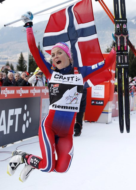 FIS Tour de Ski overall women winner Therese Johaug of Norway celebrates, after the women's cross-country skiing 9km final climb free pursuit race on the Alpe Cermis, in Val di Fiemme January 10, 2016. (Photo by Alessandro Garofalo/Reuters)