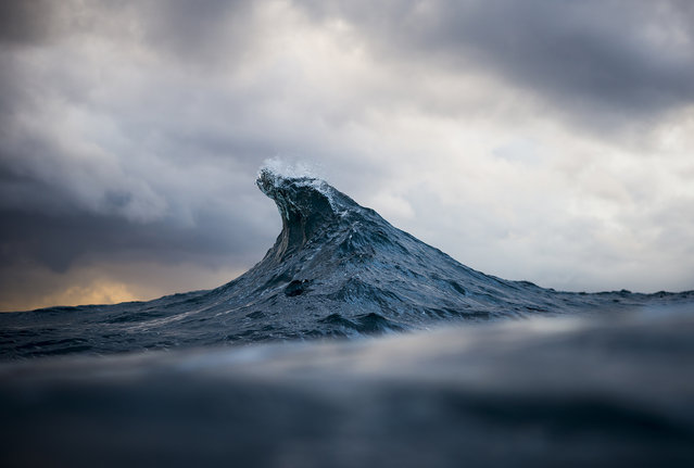 Collins says he feels like he lives two completely separate lives with the vast differences between the mine and the ocean, but that he feels most at home in the saltwater with his camera than anywhere else. (Photo by Ray Collins)