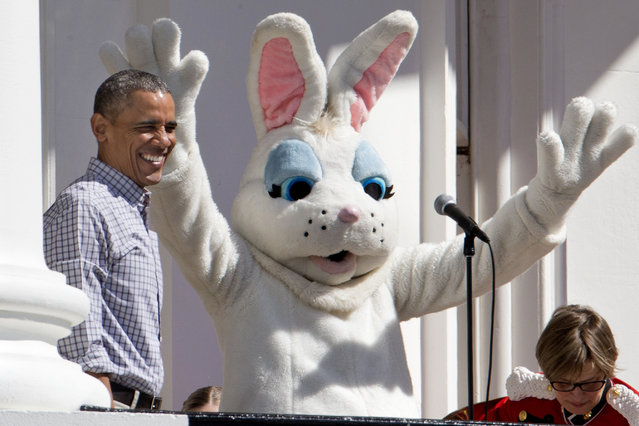 President Barack Obama smile next to the Easter Bunny during the White House Easter Egg Roll on the South Lawn of White House in Washington, Monday, April 6, 2015. Thousands of children gathered at the White House for the annual Easter Egg Roll. This year's event features live music, cooking stations, storytelling, and of course, some Easter egg roll. (Photo by Jacquelyn Martin/AP Photo)