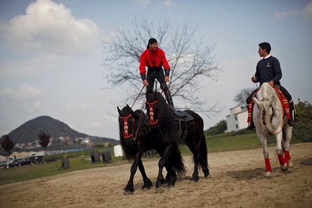 Horsemen warm up before the Sacab Andalusian Horse Show in Coin, southern Spain, April 12, 2015. (Photo by Jon Nazca/Reuters)