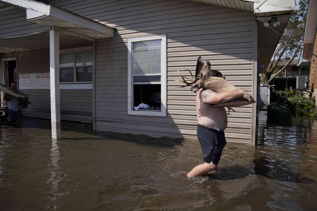Josh Montford carries taxidermy deer heads from his flood damaged home in the aftermath of Hurricane Ida, Wednesday, September 1, 2021, in Jean Lafitte, La. (Photo by John Locher/AP Photo)