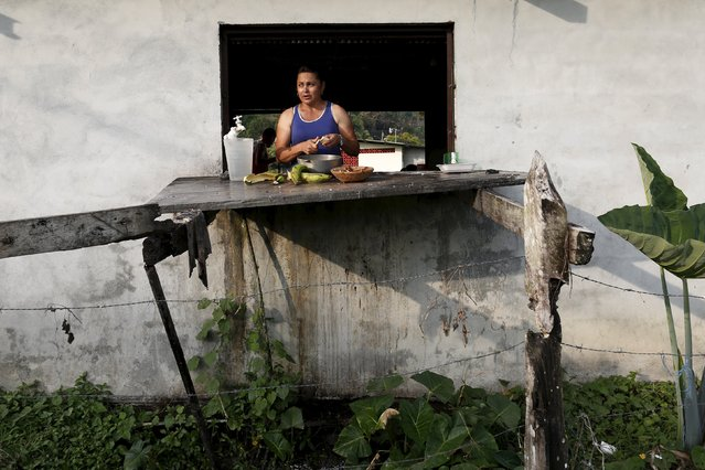 A Cuban migrant cuts vegetables to cook in a provisional shelter in Paso Canoas, at the border with Costa Rica, in Panama March 21, 2016. (Photo by Carlos Jasso/Reuters)