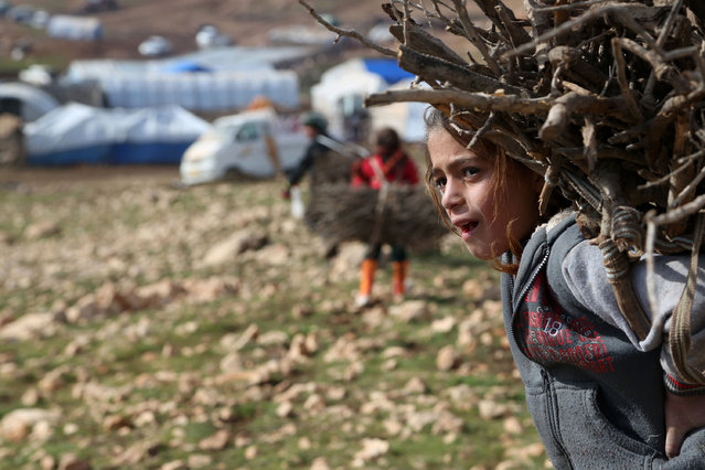 In this file photo taken on Monday, January 12, 2015, an Iraqi girl from the Yazidi minority carries firewood on Mount Sinjar in northern Iraq. (Photo by Seivan Selim/AP Photo)