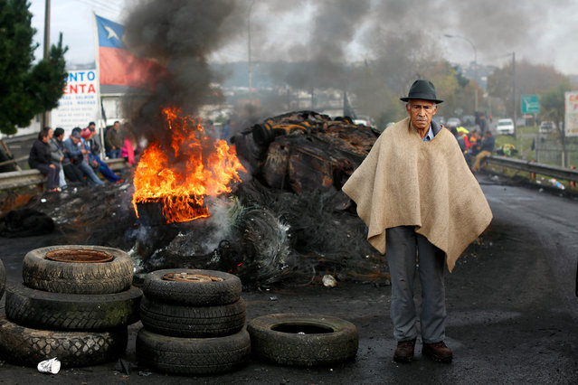 A man stands next to a barricade blocking a road during a protest calling on the government to help ease the economic effects of an harmful algal bloom that had affected their livelihoods at Chiloe island in Chile, May 6, 2016. (Photo by Pablo Sanhueza/Reuters)