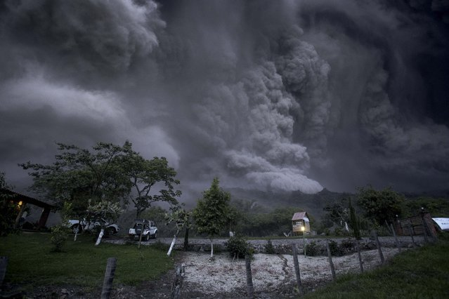 Clouds of ash fill the sky after an eruption by the Colima volcano, known as the Volcano of Fire, near the town of Comala, Mexico, Friday, July 10, 2015. The volcano spewed ash more than 4 miles (7 kilometers) into the air and released some quantity of lava. People were advised to recognize a 3-mile (5-kilometer) perimeter around the peak. (Photo by Sergio Tapiro Velasco/AP Photo)
