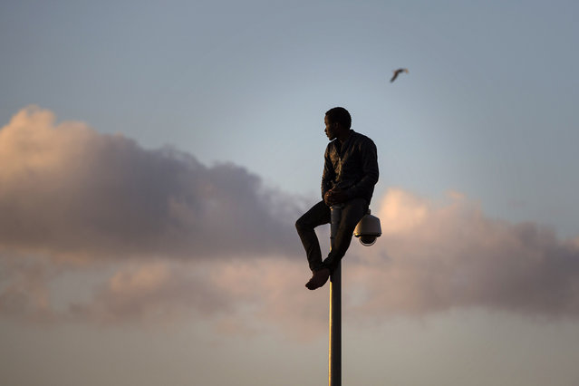 A sub-Saharan migrant sits on top of a pole set in a metallic fence that divides Morocco and the Spanish enclave of Melilla, early in the morning on Wednesday, May 28, 2014. Several hundred African migrants charged a barbed-wire border fence in Spain's North African enclave of Melilla, with many managing to get across while dozens of others were beaten back by Moroccan and Spanish police. During the pre-dawn border storming, cries of pain and noises of people being hit could be heard as police from both sides tried to prevent dozens of the sub-Saharan migrants from entering the city from Morocco. (AP Photo/Santi Palacios)