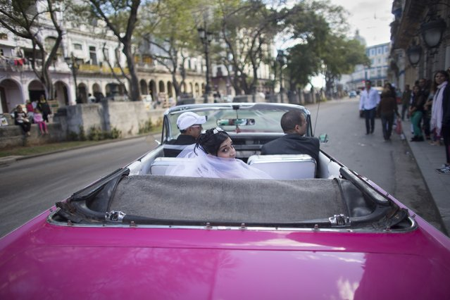 A bride looks to the camera from a convertible vintage car as she arrives for her wedding at the Palacio de los Matrimonios (Wedding Palace in Spanish) in downtown Havana, February 14, 2015. (Photo by Alexandre Meneghini/Reuters)