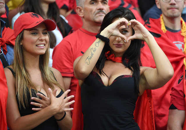 Albania supporters cheer prior to the Euro 2016 group A football match between France and Albania at the Velodrome stadium in Marseille on June 15, 2016. (Photo by Boris Horvat/AFP Photo)