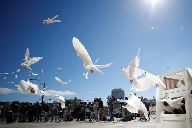 Doves are released for each victim of the Route 91 Harvest music festival mass shooting at City Hall plaza in Las Vegas, Nevada, U.S., October 7, 2017. (Photo by Chris Wattie/Reuters)