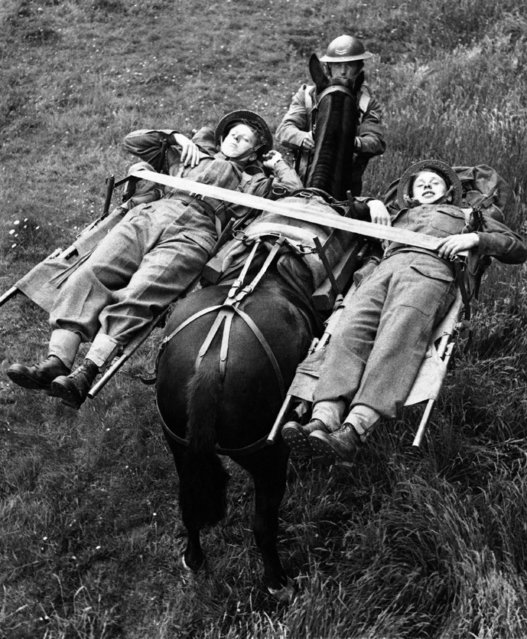 These British soldiers demonstrate how to climb a mountain lying down as they travel in an airborne stretcher on a Johnston carrier in England, September 30, 1944, much as panniers were once slung across the backs of horses. It is part of the latest in mountain warfare equipment. (Photo by AP Photo)