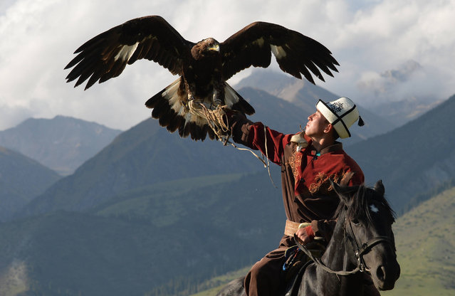 A Kyrgyz berkutchi (an eagle hunter) holds his bird, a golden eagle, during the World Nomad Games 2016 in the Kyrchin (Semenovskoe) gorge, some 300 km from Bishkek on September 7, 2016. (Photo by Vyacheslav Oseledko/AFP Photo)